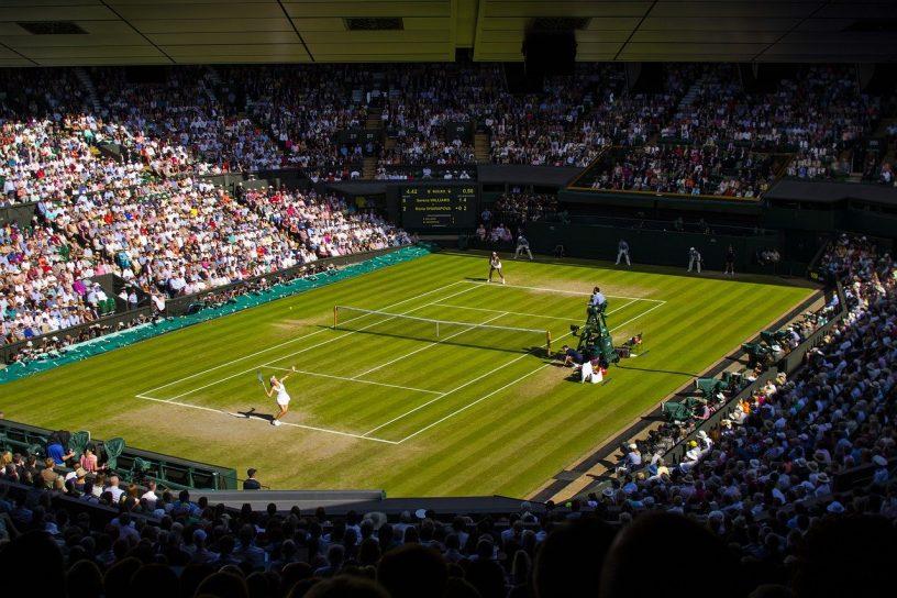 surface-jeu-herbe-gazon-tennis